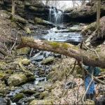 Stream Preservation